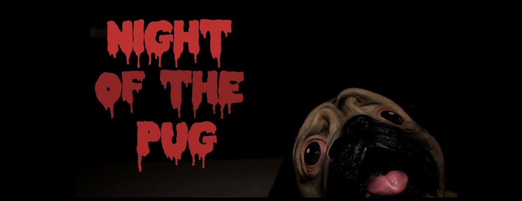 Night of the Pug
